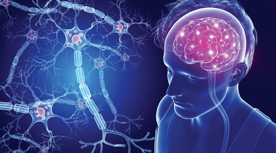 Multiple Sclerosis - Intellectual Disability - Adelaide Disability Medical Services